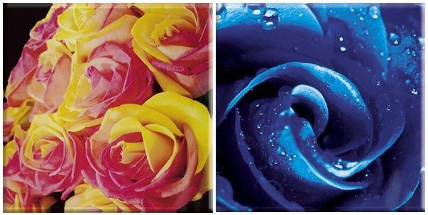 Fot. www.paradyz.com. Przepiękne, różane inserta szklane z kolekcji Ceramiki Paradyż.