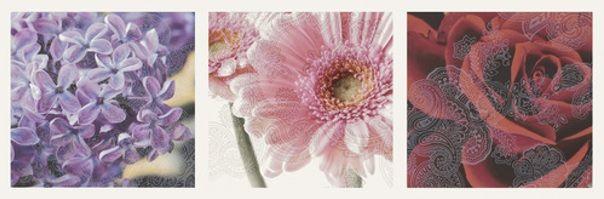 Fot. www.paradyz.com. Tym razem płytki z kolekcji Briosa Ceramiki Paradyż mają nieco inne zadanie. Mogą być, za sprawą sposobu przedstawienia kwiatów, świetnym wyborem do domowego, pachnącego SPA. Czy jest ktoś, kto wpatrując się intensywnie na przykład w tak idealnie odwzorowane kwiaty bzu - nie pomyśli choć przez chwilę o ich zapachu? Zapewne niewielu obserwatorów oprze się złudzeniu…