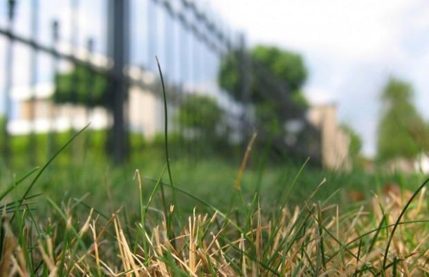 © freeimages.com